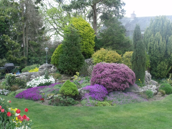 Алпинеум в градината и двора