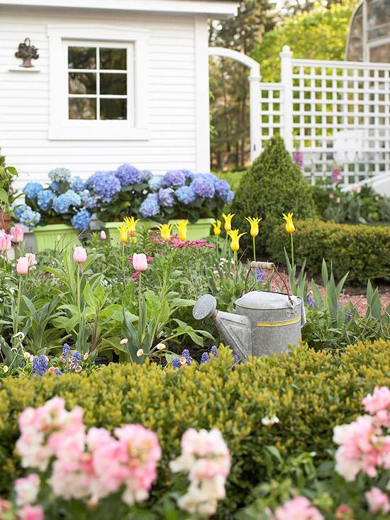 cvetna gradina s laleta hortenzii