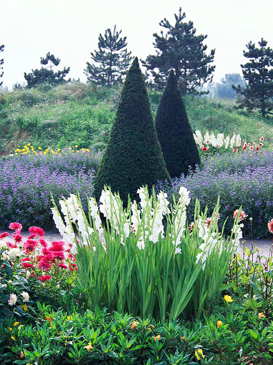 cvetna gradina