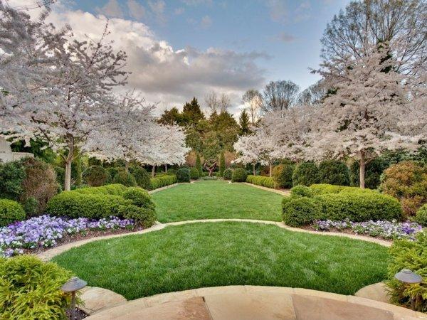 idei za gradinata cvetq hrasti darveta