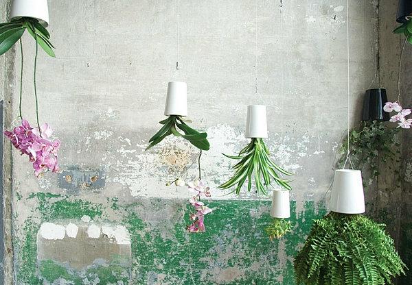 пролетни идеи за градината