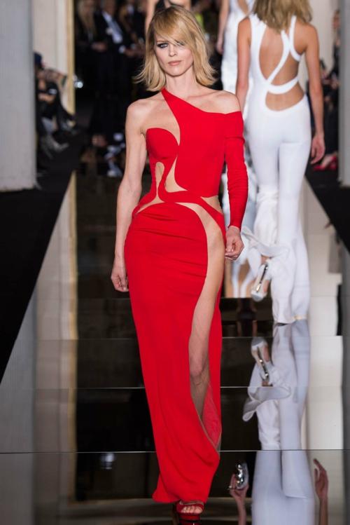 vissha moda Atelier Versace 2015