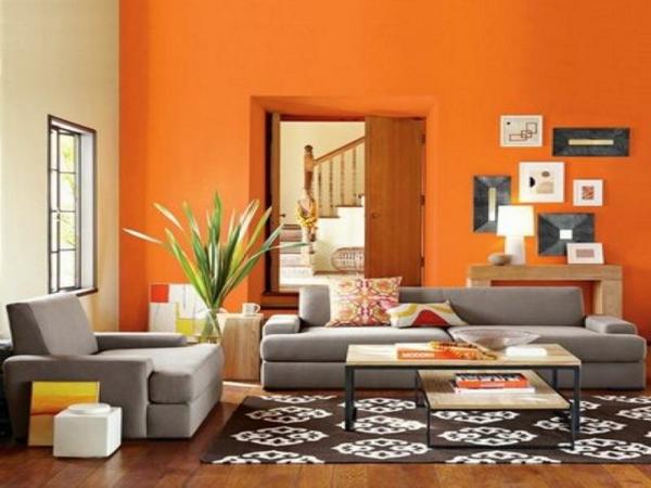 izbor cvqt stena staq oranjeva