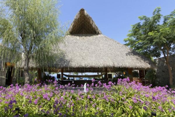 kashta v tropicite meksiko gradini