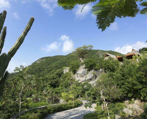 kashta v tropicite meksiko halm gora