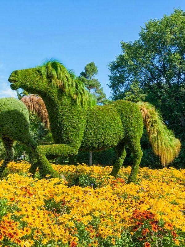 monreal botanicheska gradina figura kon