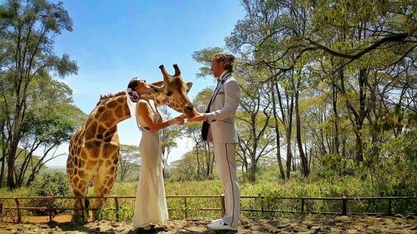 dvoika maj jena svatba nairobi park jiraf