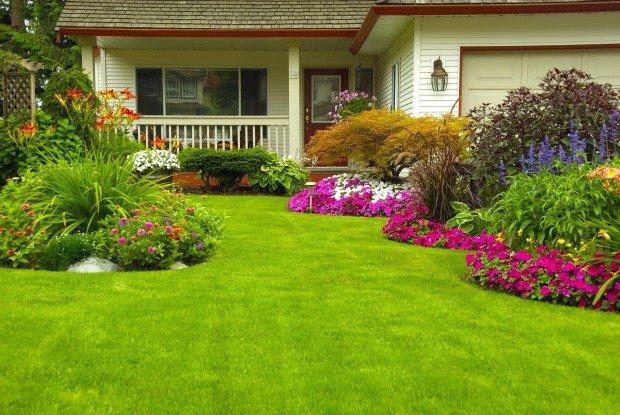 Елементите на красивата градина