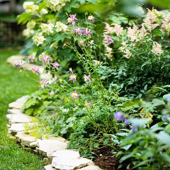 красивата градина