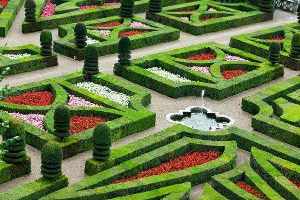 oficialen stil gradini cherveni cvetq hrasti