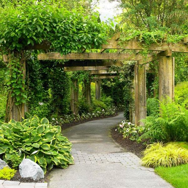 Съвети за градина пътени пергола