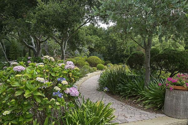 saveti gradina hortenzii pateka hrasti