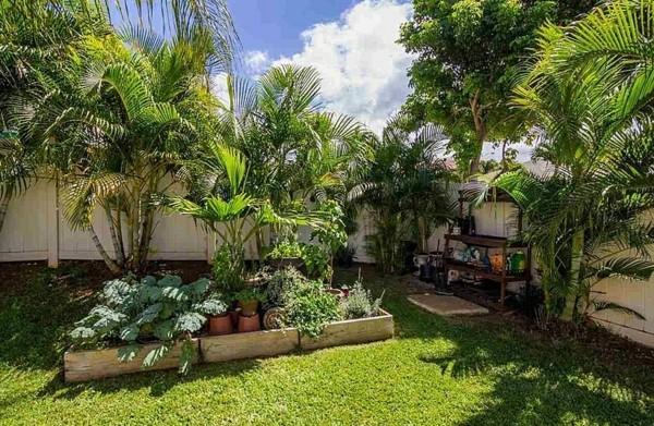 saveti gradina palmi treva raigras hrasti