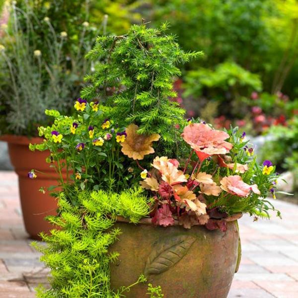 Съвети за градина саксия с цветя