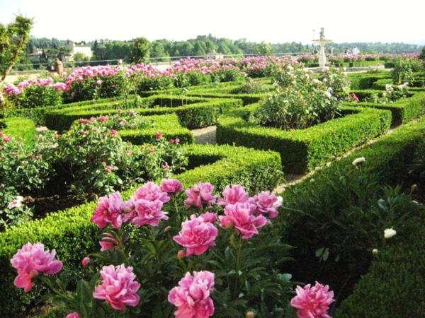 gradina hrasti rozi oficialen stil
