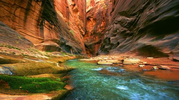 snimki grand kanion i reka kolorado