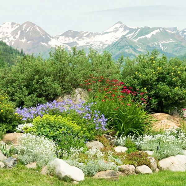 alpineum