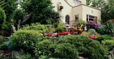 Идеи за градински алпинеум