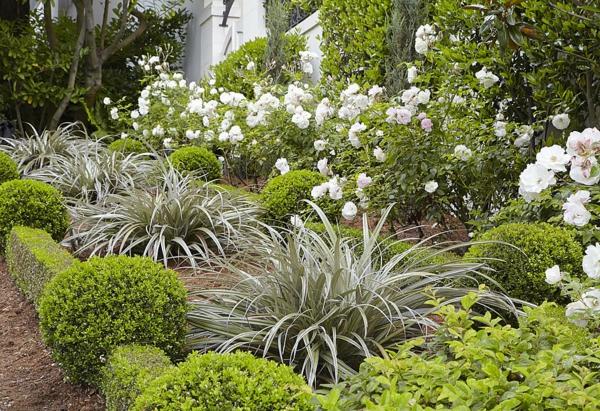 moderna gradina zelenibeli rasteniq cvetq hrasti