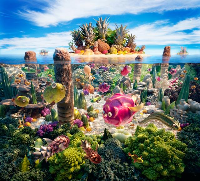 fotografiq peizaji morski hrana