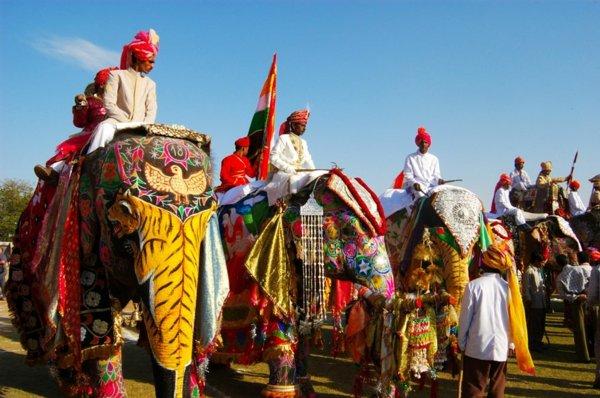 po sveta festivali jaipur slonove indiq