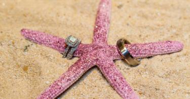prasteni svatba morska zvezda
