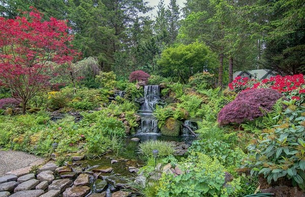 saveti gradina darveta vodopad fontan hrasti darveta