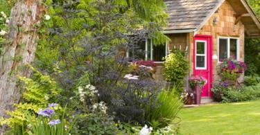 Съвети за красива градина