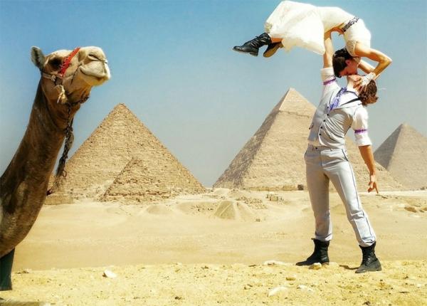 egipet kamila svatba