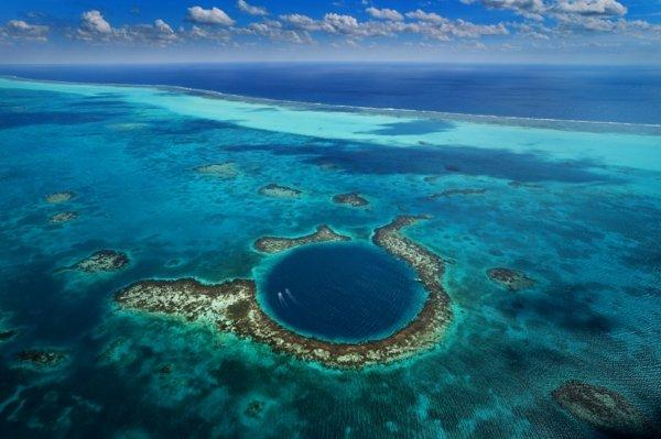 beliz sinq dupka amerika okean korali