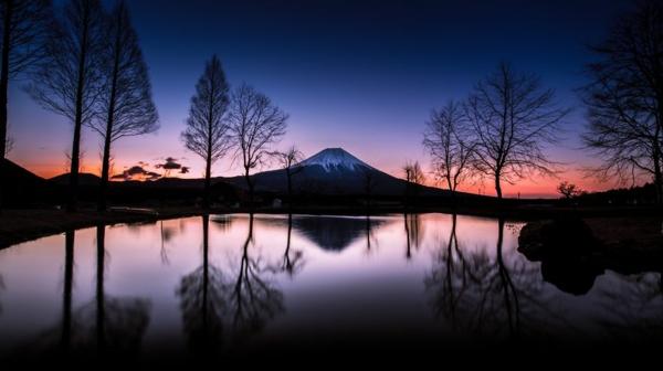 peizajna fotografiq cvete planina darveta ezero