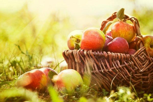 hrani metabolizam kalorii qbalki