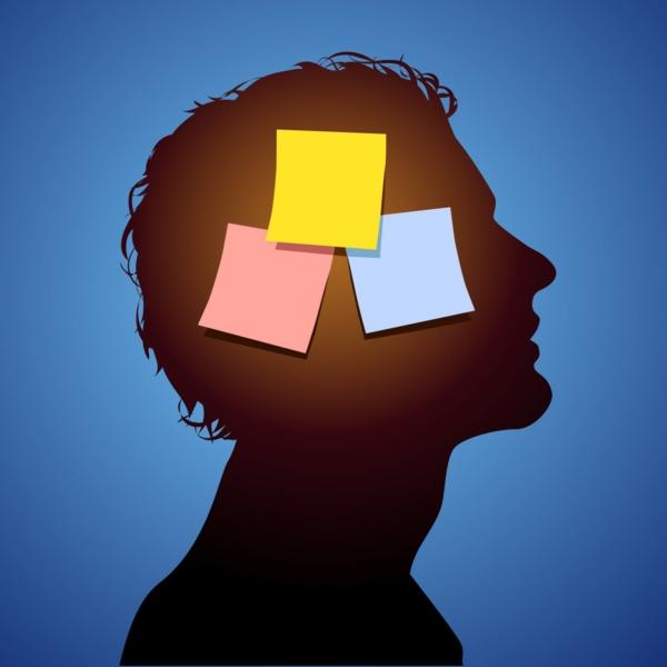 zapametqvane barzo pamet mozak