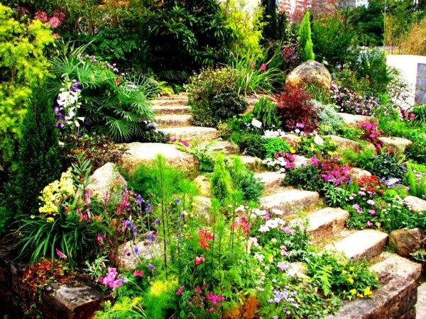 идеи декорация на градина храсти цветя зелено