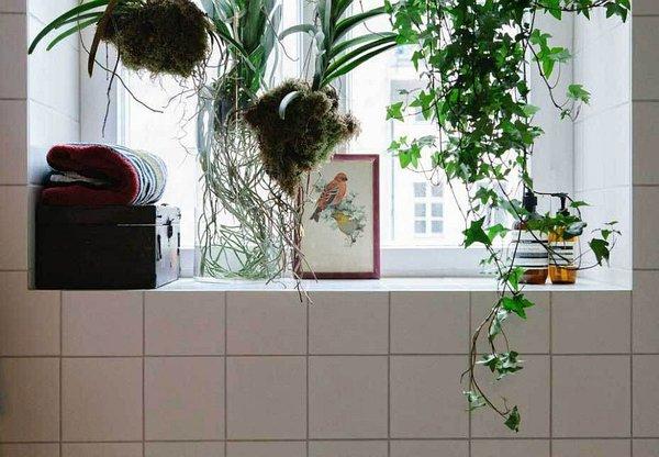 идея за малък апартамент баня интериор обзавеждане растения бяло