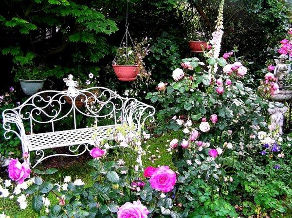 съвети и идеи за градина