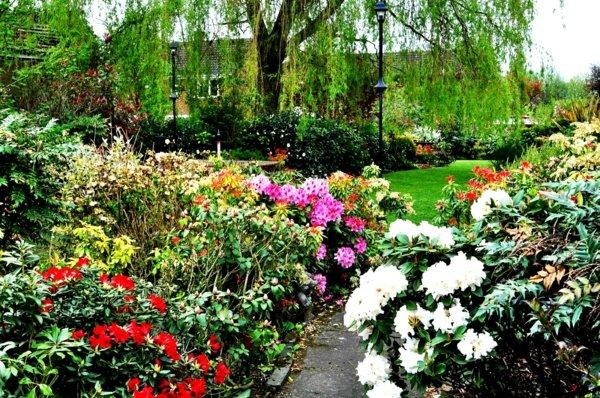 лесни съвети идеи градина цветя