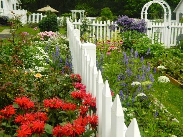 лесни съвети и идеи градина ограда цветя