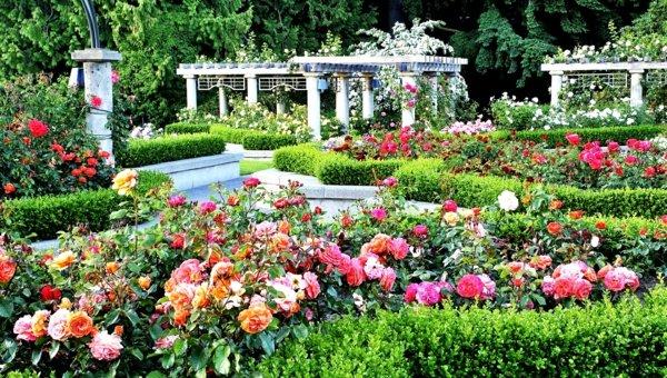 Лесни съвети и идеи за градина с много цветове