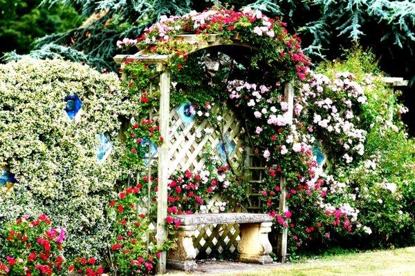 лесни съвети и идеи за градина