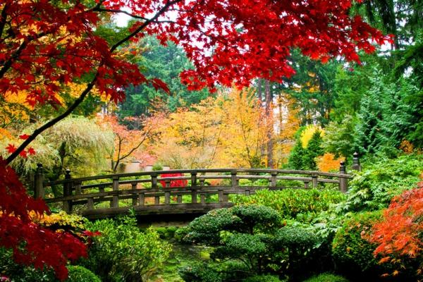 места които да посетите сами японска градина