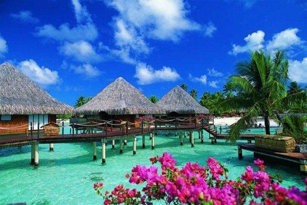таити-море-океан-къщи-френска-полинезия
