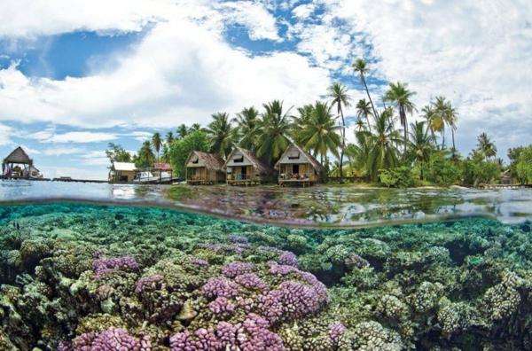 таити-океан-плаж