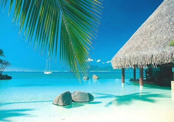 океан-таити-плаж-палма