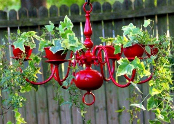 idei saksii dizain polilei cvetq cherveno