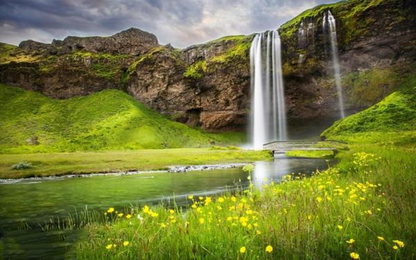 vodopadi v sveta skali rasteniq priroda