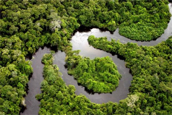 бразилия река амазонка гора джунгла дестинация