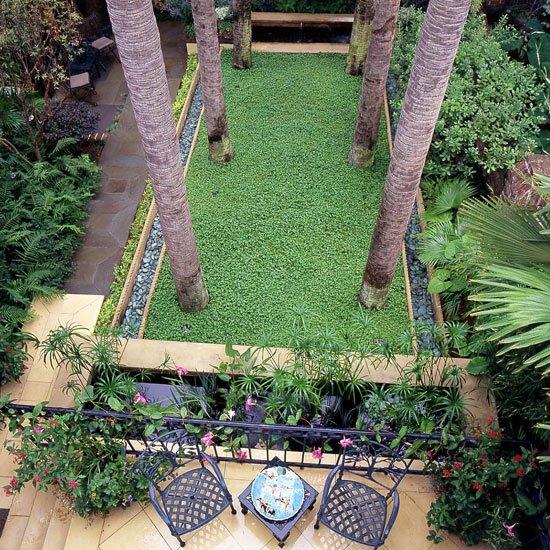 идеи за градината геометрия дървета растения палми