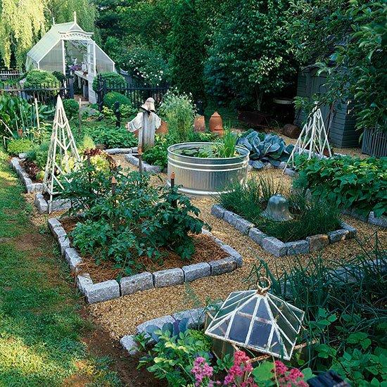 идеи градината зеленчуци билки