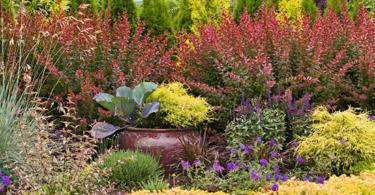 Идеи за градината или как да я освежим